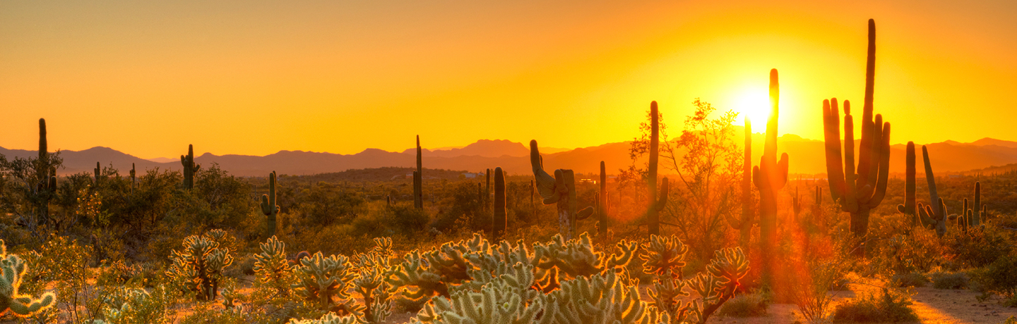 this sonoran sunset will make you book hotels online