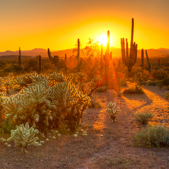 Sunset at Scottsdale Sonoran Preserve | Book Hotels Online