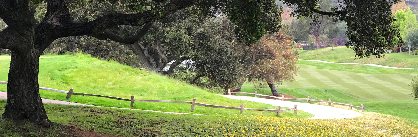 Carmel Valley Ranch_Golf_Oak Tree_v1_current