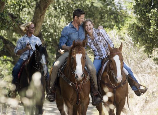 Carmel Valley Lifestyle Horses 13 THS0614