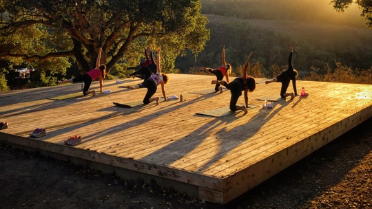 Outdoor Yoga class taking place on platform overlooking Robinson Canyon,.