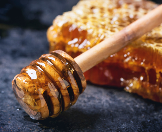 Carmel Valley Ranch_Honey