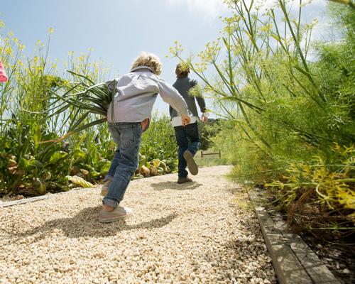 Carmel Valley Ranch_Lifestyle_Organic Garden_kids running through garden