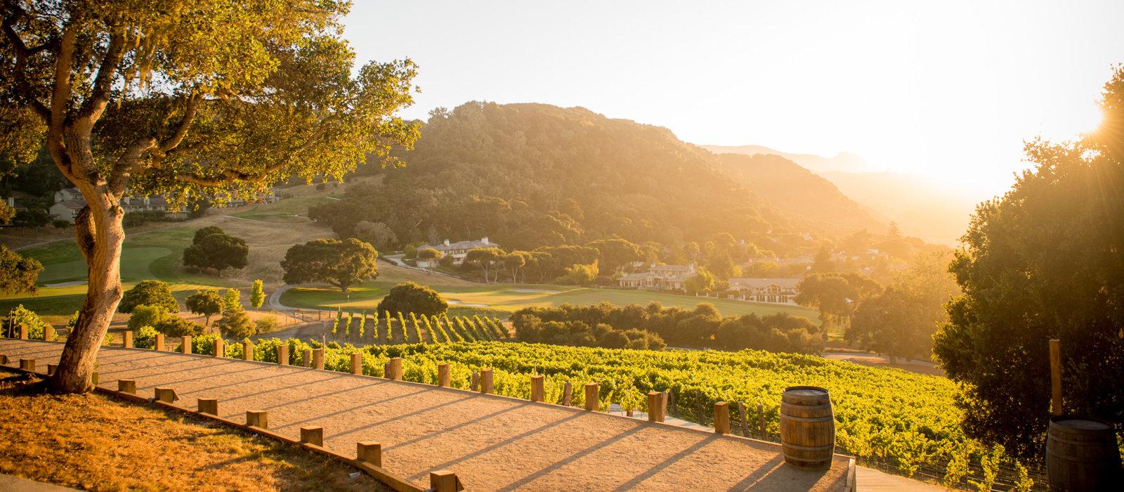 Carmel Valley Ranch_Property_Harvest Landing_vineyard_twilight_v1_current