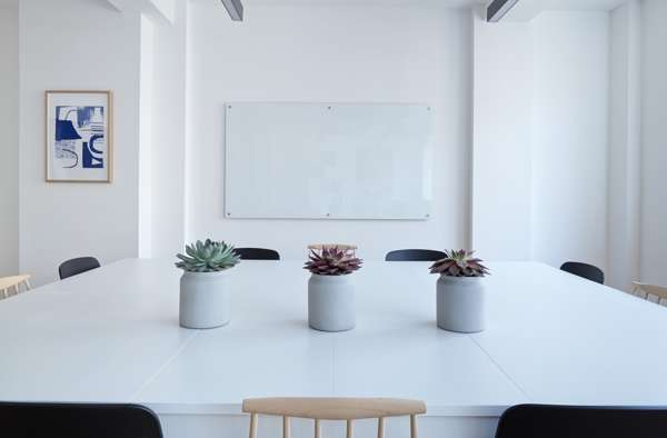 Meeting Room With Succulents